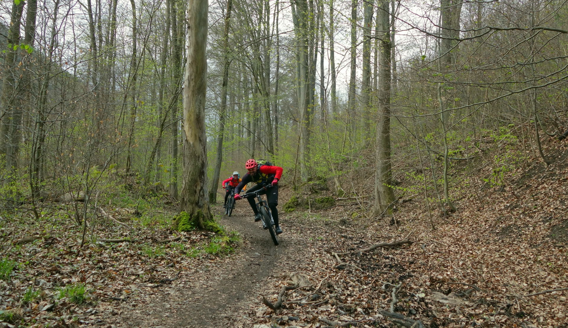 Mountainbike singletrails harz